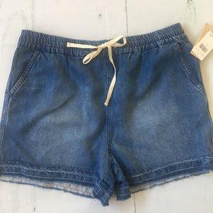 New Splendid Indigo Dye Raw Hem Shorts